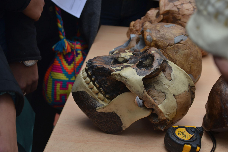 Arqueologiaxdia4