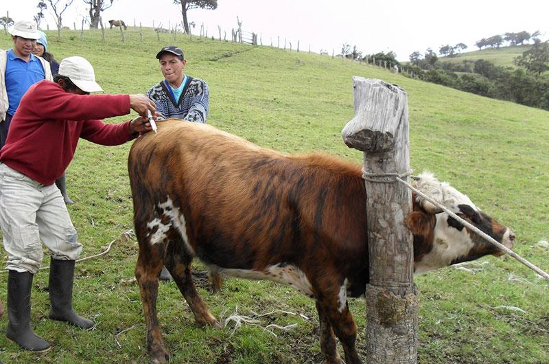Aspram. Cortesía: Fundación Smurfit Kappa Colombia