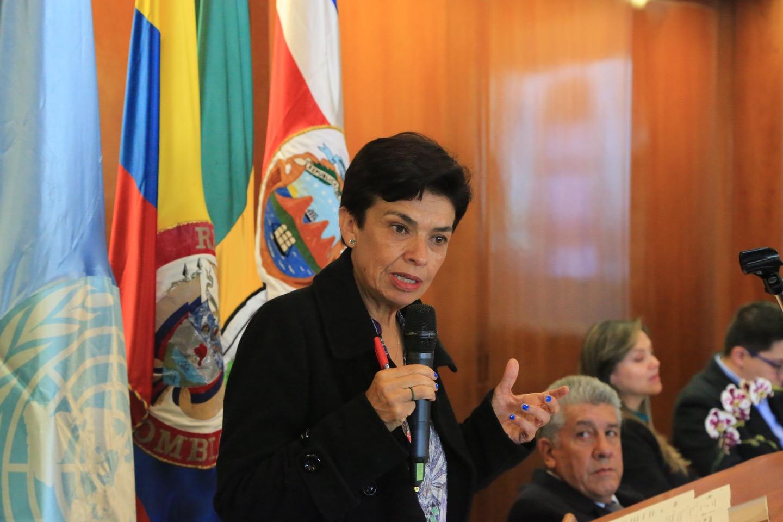 Marcela Gutiérrez, Centro de Investigación en Política Criminal