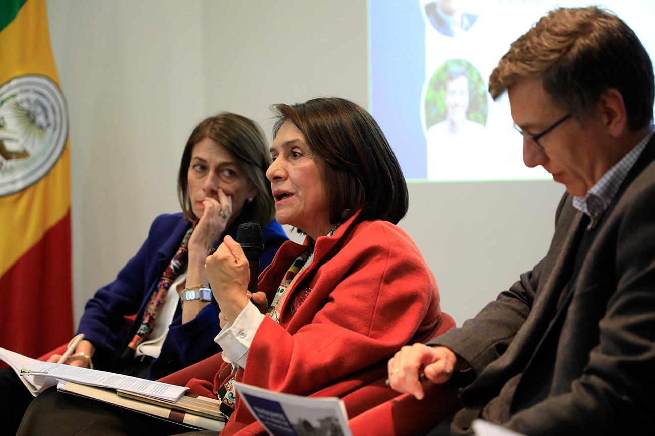 Hoja de Ruta: una planeación de largo plazo de los Programas de Desarrollo con Enfoque Territorial (PDET) 22