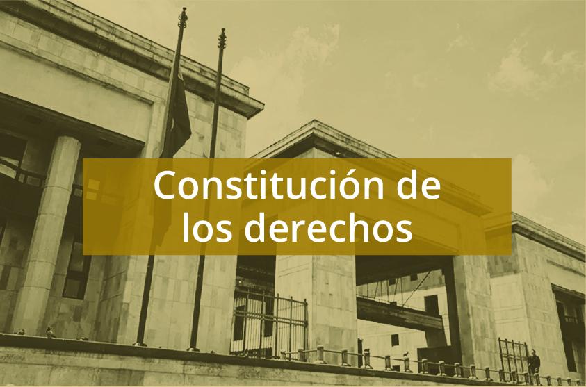 Constitución de los derechos: entre promesas y realidades